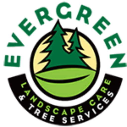 Evergreen Tree Service Experts