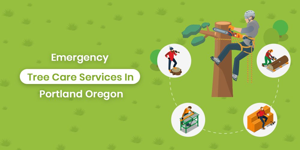 Emergency Tree Service In Portland Oregon