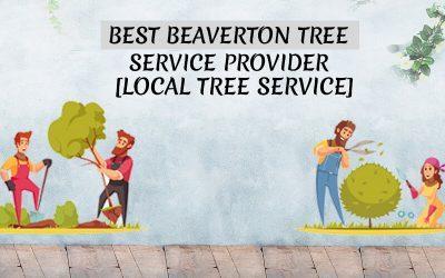 Best Beaverton Tree Service Provider [Local Tree Service]