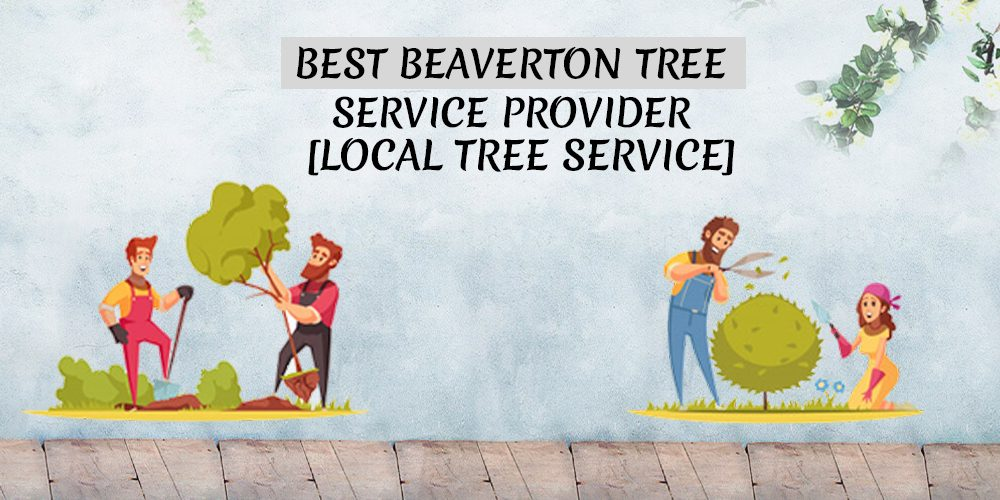 Best Beaverton Tree Service Provider [Local Tree Service]