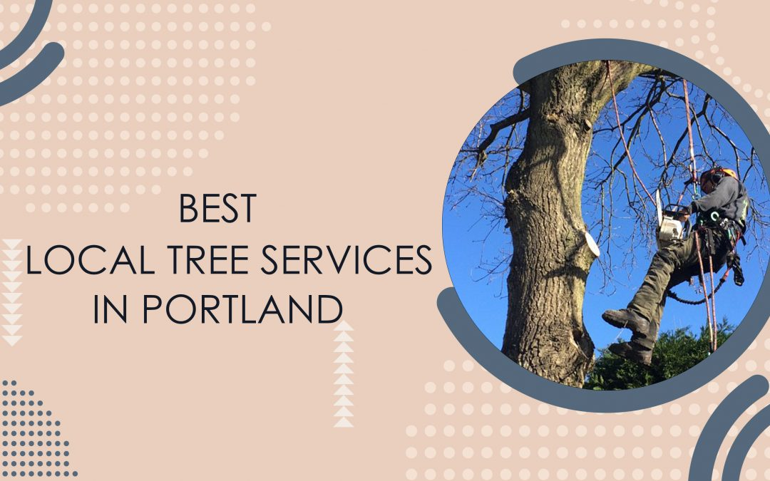 Best Local Tree Care Services In Portland Oregon | Tree Trimming And Removal