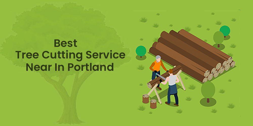 Best Tree Cutting Service Near In Portland Oregon